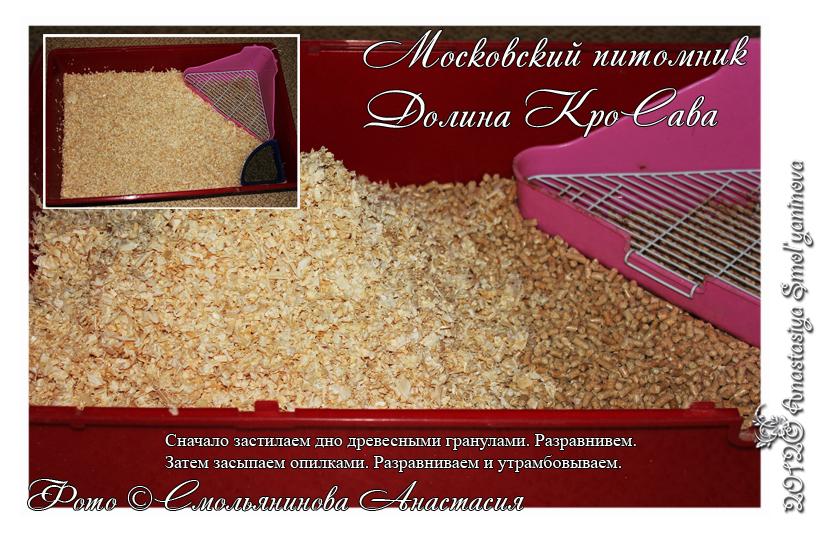 http://www.home-rabbit.ru/1/100101.jpg