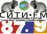 Карликовые и декоративные кролики, мы на радио сити фм, в программе Хозяева жизни.