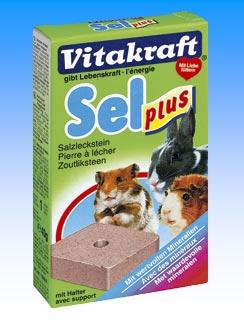 карликовые кролики: миниральные добавки для кролика